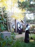 carmelite-sisters-raking