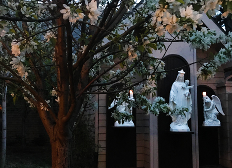 Our courtyard in the early evening