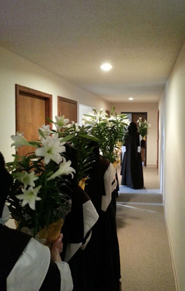 Procession of lillies